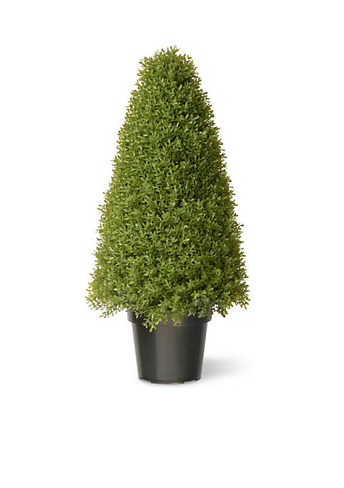 National Tree Company® Boxwood Tree With Dark Green