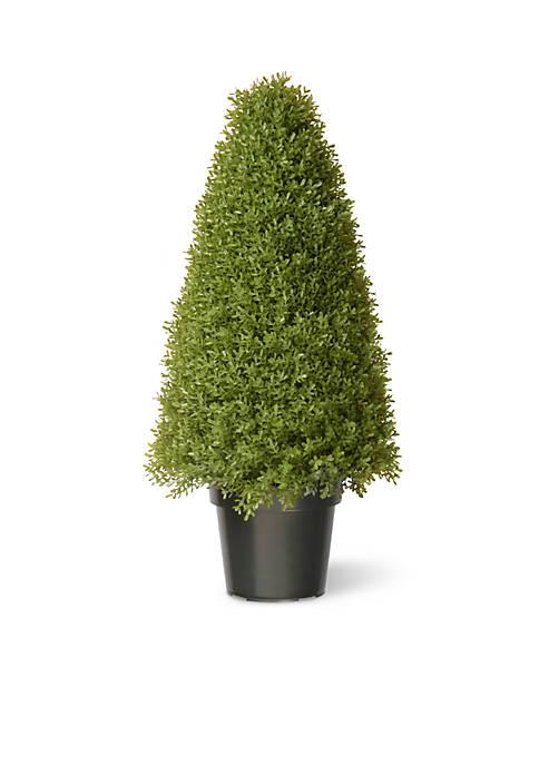National Tree Company® Boxwood Tree W/ Green Pot