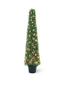 48 Mini Boxwood Square Topiary Tree In Round Green Growers Pot With 100 Clear Lights
