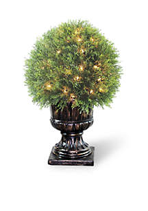 Upright Juniper Ball Topiary Tree In a Decorative Urn  With 70 Clear Lights