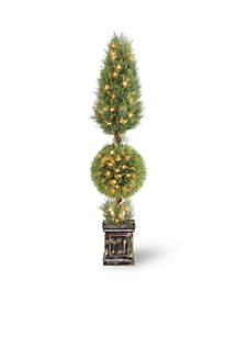 Juniper Cone And Ball Topiary Tree With Black Square Pot & 200 Clear Lights