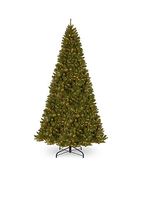 National Tree Company® 12-ft. North Valley Spruce Tree
