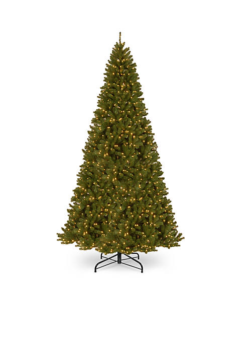 National Tree Company® 16-ft. North Valley Spruce Tree
