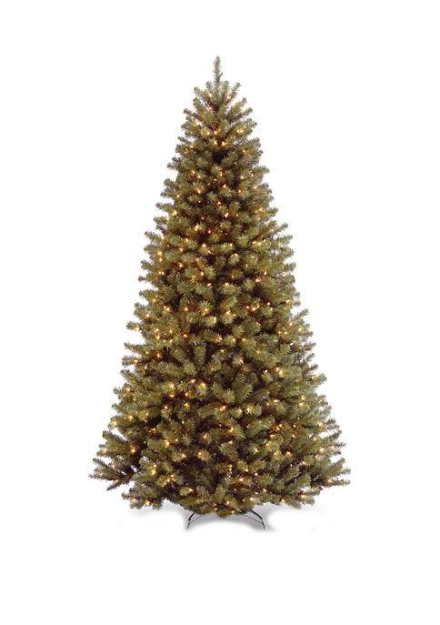 6 Foot North Valley Spruce Tree with Clear Lights
