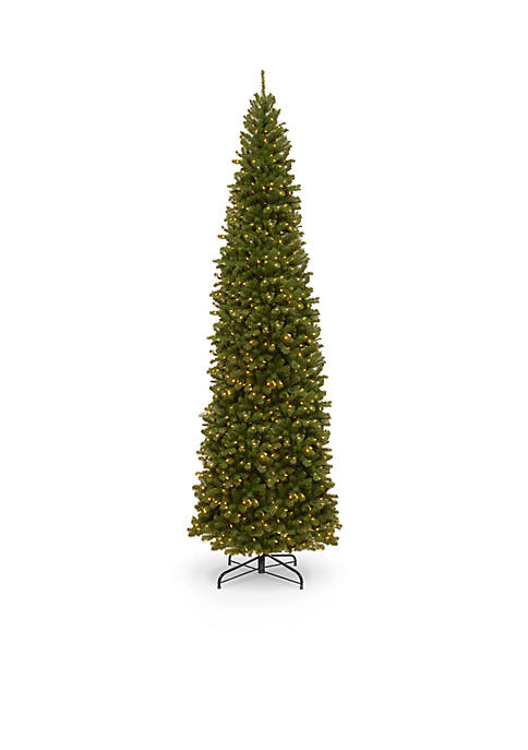 National Tree Company® 12-ft. North Valley Spruce Pencil