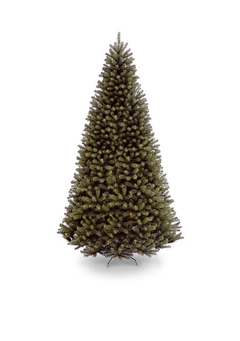 10-ft. North Valley Spruce Tree