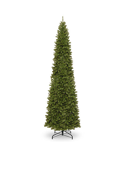 14-ft. North Valley Spruce Pencil Slim Tree