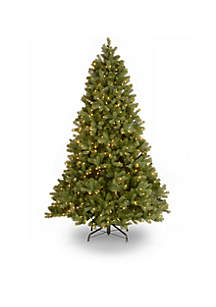 National Tree Company® 6.5-ft. Feel Real Downswept Douglas Fir Hinged Tree with LED Lights and PowerConnect
