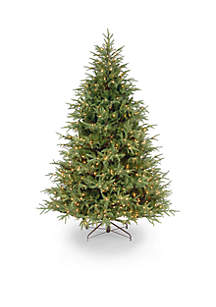 National Tree Company® Fraser Grande Tree with Clear Lights