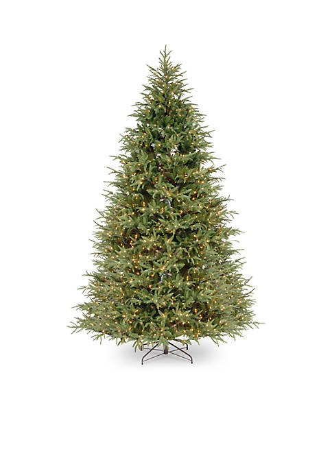 9 Foot Fraser Grande Tree with Clear Lights