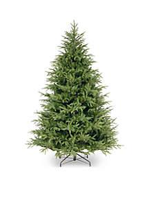 National Tree Company® Fraser Grande Tree