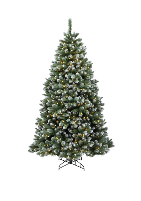 6.5 Foot Finley Pine Tree with Clear Lights