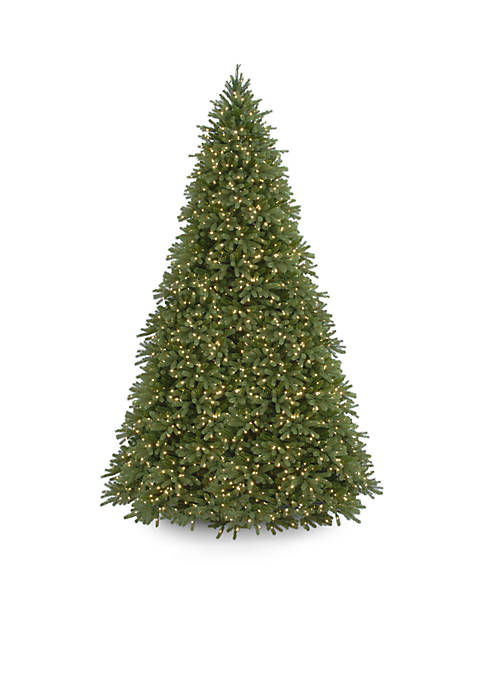 National Tree Company® 12-ft. Feel Real Jersey Fraser