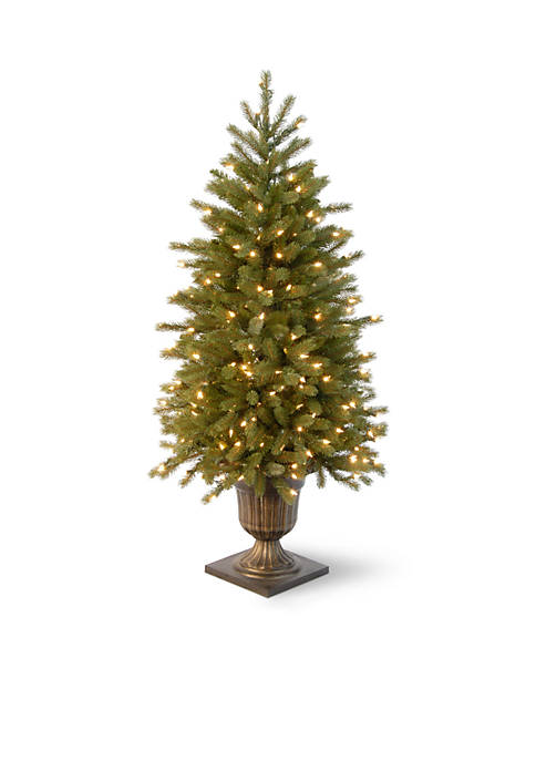 National Tree Company® 4-ft. Jersey Fraser Fir Entrance