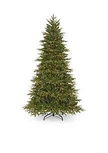 National Tree Company® 9-ft. Feel Real Northern Fraser Fir Tree with Clear Lights