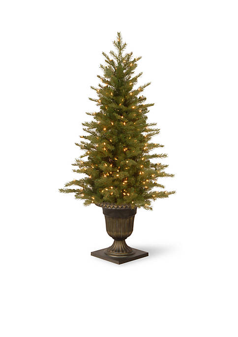 National Tree Company® 4 ft Nordic Spruce Entrance