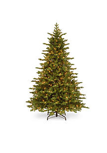 National Tree Company® 7.5-ft. Feel Real Vienna Fir Tree with LED Lights and PowerConnect