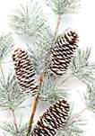 Woodland Winter Set of 3 Pine Christmas Tree Picks