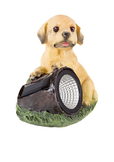 Solar Outdoor LED Light – Dog Statue