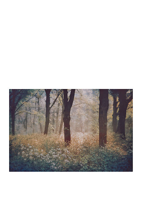 Meadow In The Forest Photography Canvas Art