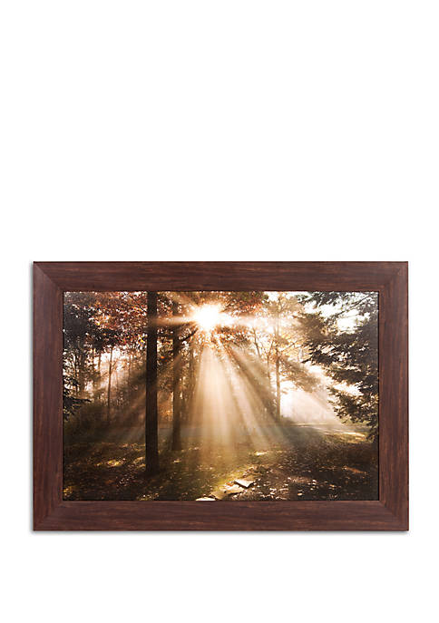 Patton Picture New Day Fall Photography Framed Canvas