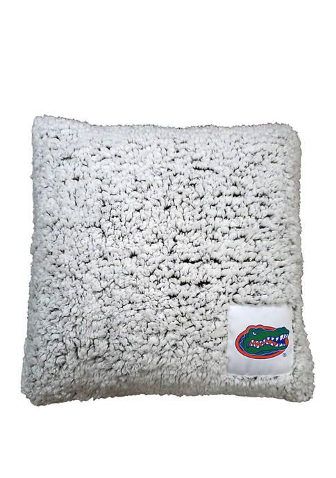 NCAA Florida Gators Frosty Throw Pillow