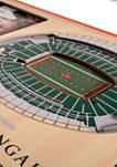 NFL Cincinnati Bengals 3D StadiumViews Picture Frame - Paul Brown Stadium