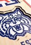 NCAA Arizona Wildcats 3D Stadium Banner-8x32