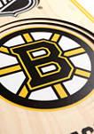 NHL Boston Bruins 3D Stadium Banner-TD Garden