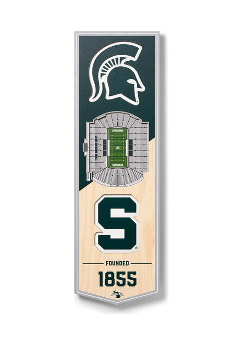 You The Fan NCAA Michigan State Spartans FB