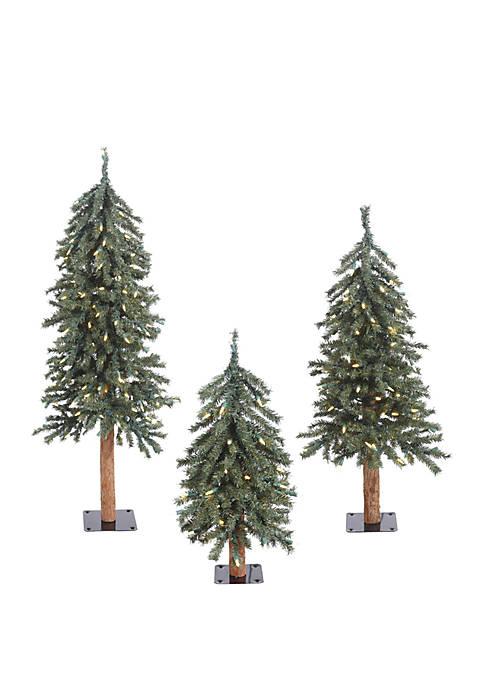 Vickerman Natural Bark Alpine Artificial Christmas Tree Set
