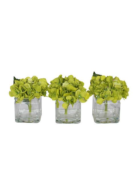 Vickerman Green Hydrangea in Cubes