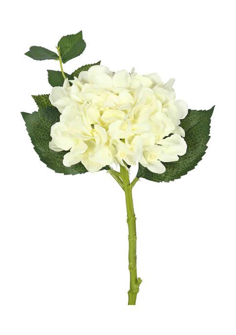 Short Stem Cream Hydrangea Set