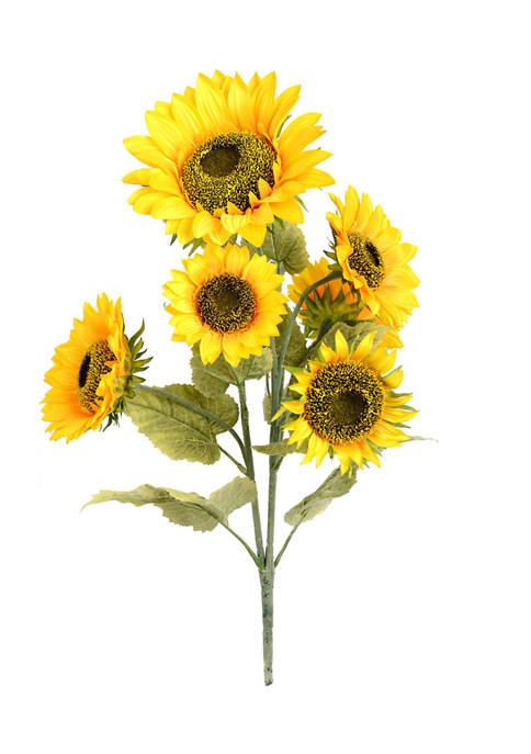 Yellow Sunflower Bush
