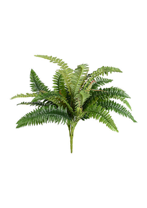 Vickerman Green Fern Bush