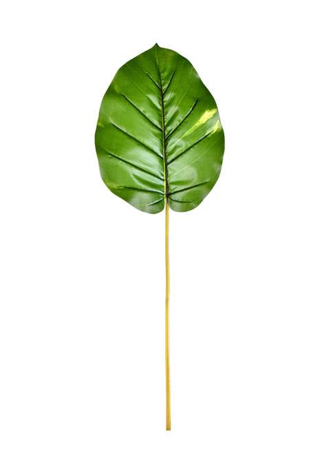 Green Pathos Leaf - Set of 6