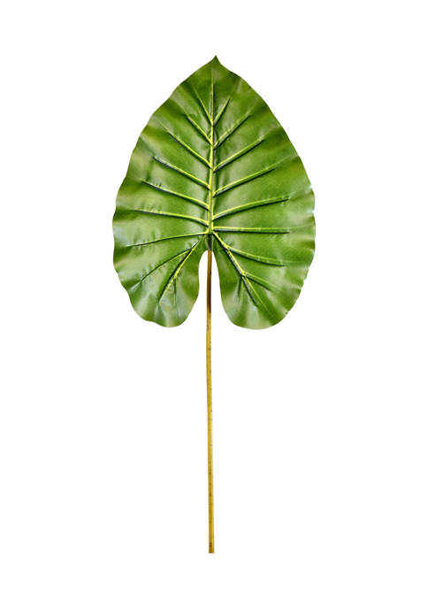 Green Philo Leaf - Set of 4