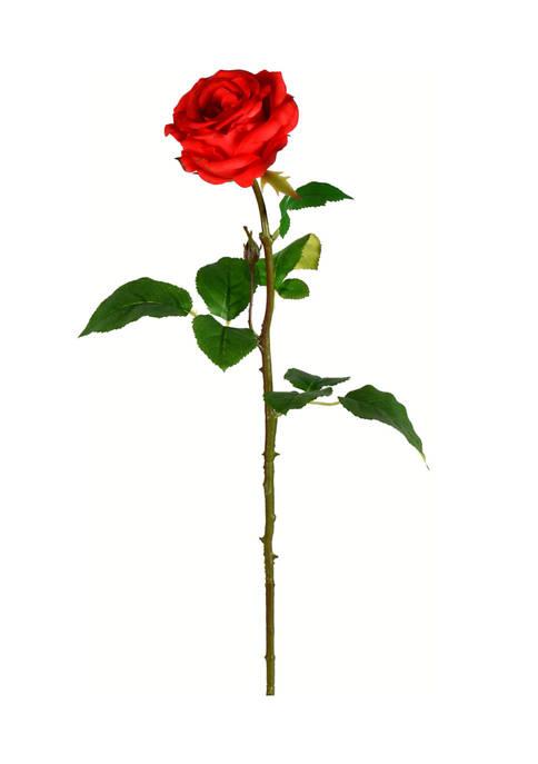 Red Rose Stem - Set of 6