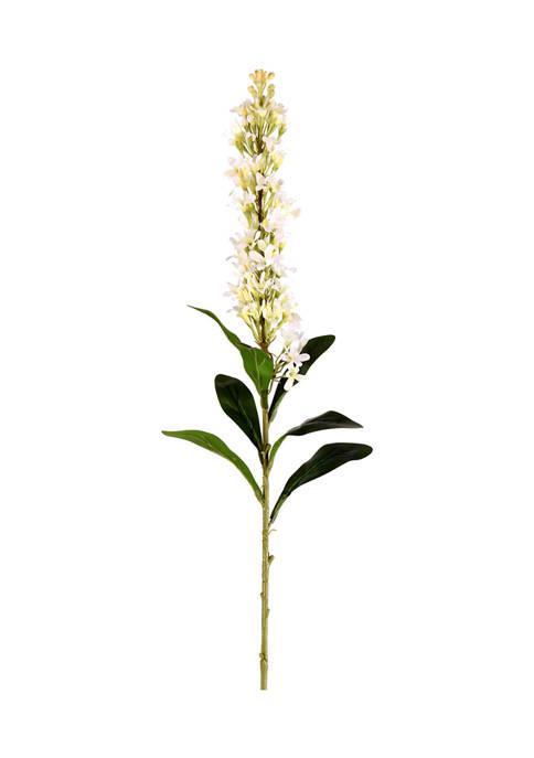 Vickerman White Hyacinth Stem