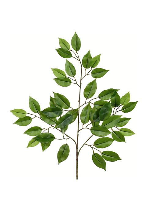 Green Leaf Spray