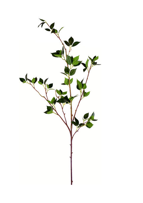 Vickerman Middle Cherry Leaf spray