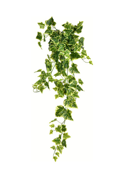 Vickerman Large Hanging Ivy Bush