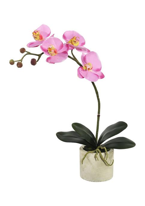 Vickerman Lavender Orchid