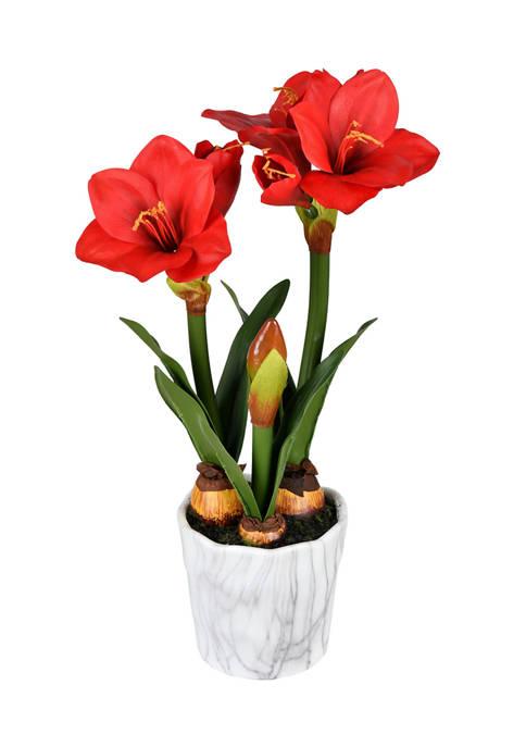 Red Amaryllis Floral Arrangement