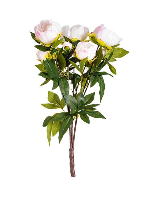 Vickerman Cream and Pink Peony Bush