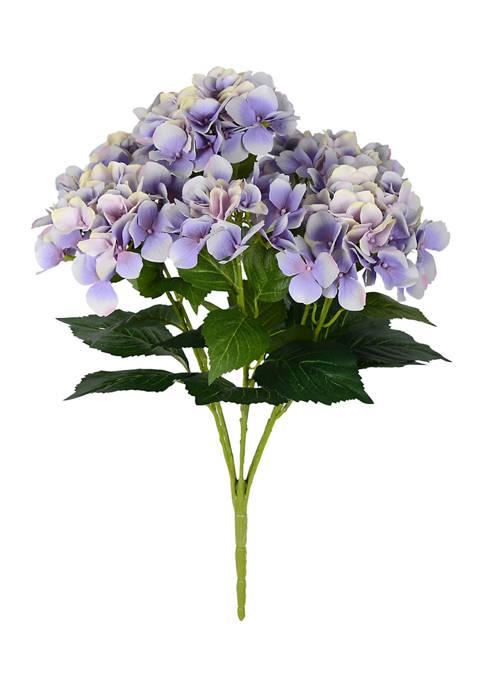 Vickerman Purple Hydrangea Bush