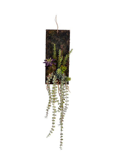 Mixed Plants on Wooden Plaque