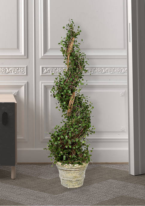 Potted Green Angel Vine Spiral Tree in Paper Pot