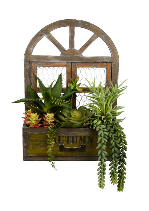 Vickerman Assorted Succulents in Hanging Box