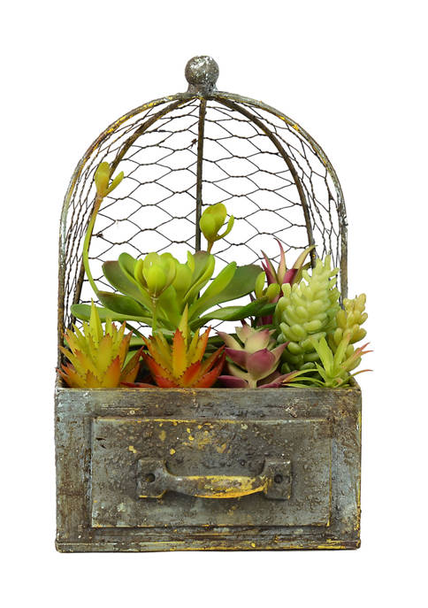 Vickerman Assorted Succulents in Metal Container and Cage